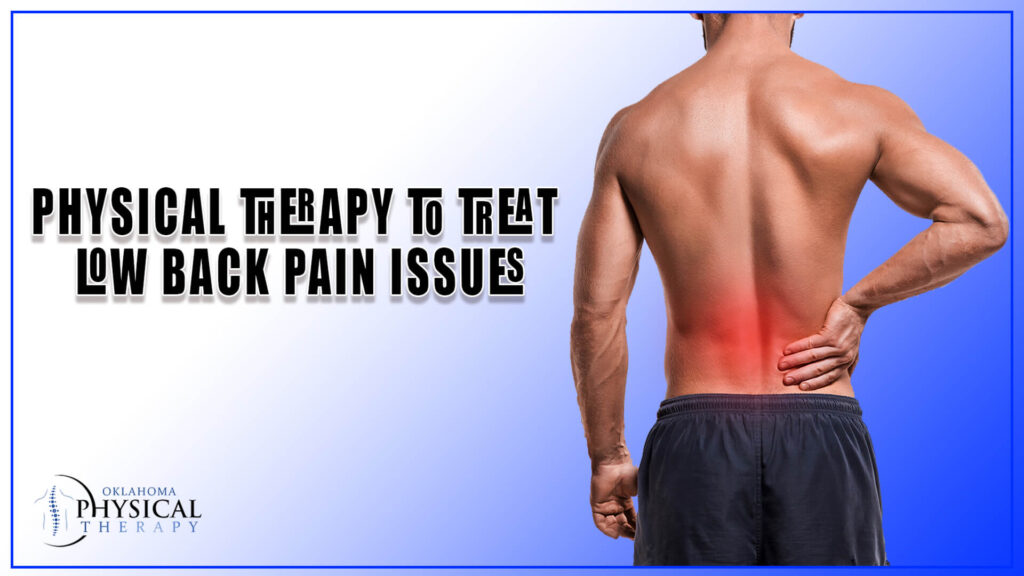 Physical Therapy to Treat Low Back Pain Issues